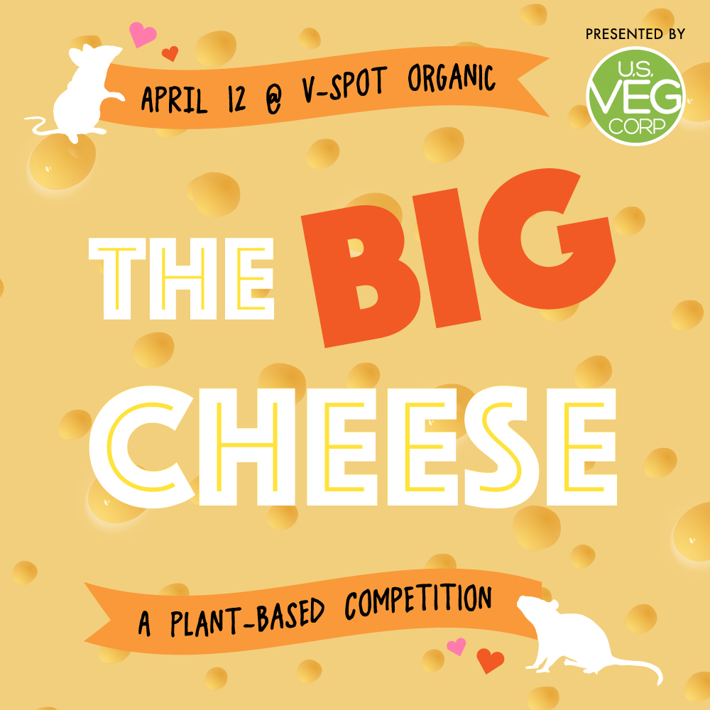 The Big Cheese, Vegan Cheese Tasting Competition