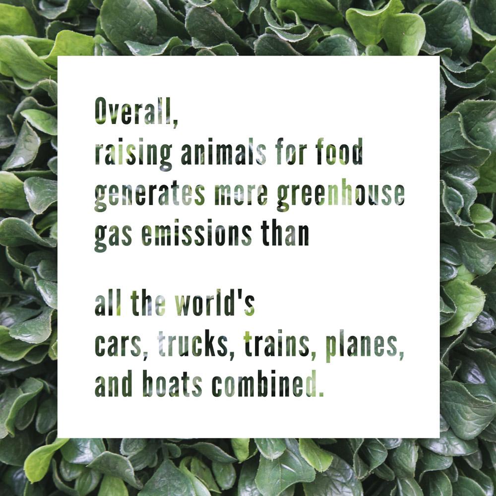 Earth Day Vegan Eats, V-Spot