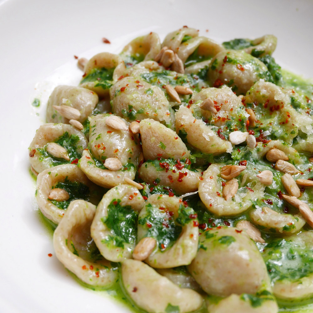 Whole Wheat Orrechiette, Narcissa