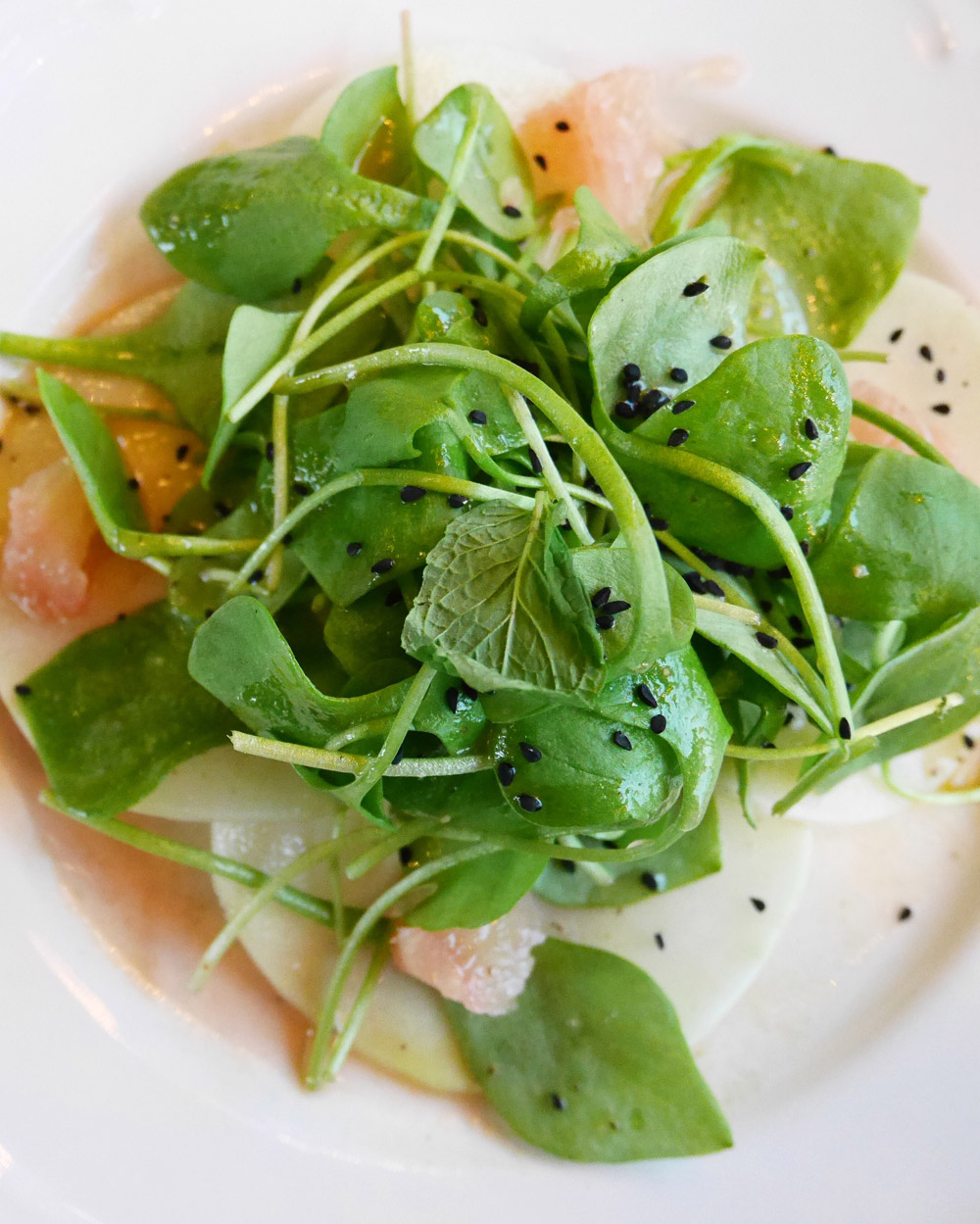 Kohlrabi Carpaccio, Harvest at the Bindery, Portland Dining Month