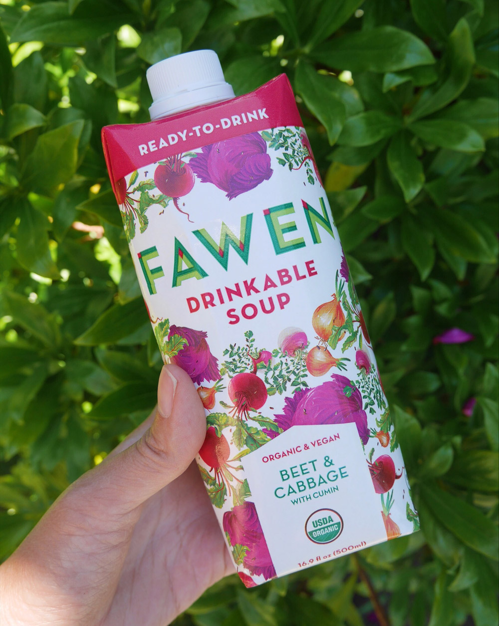 Fawen Organic Vegan Soup, Beet & Cabbage Soup