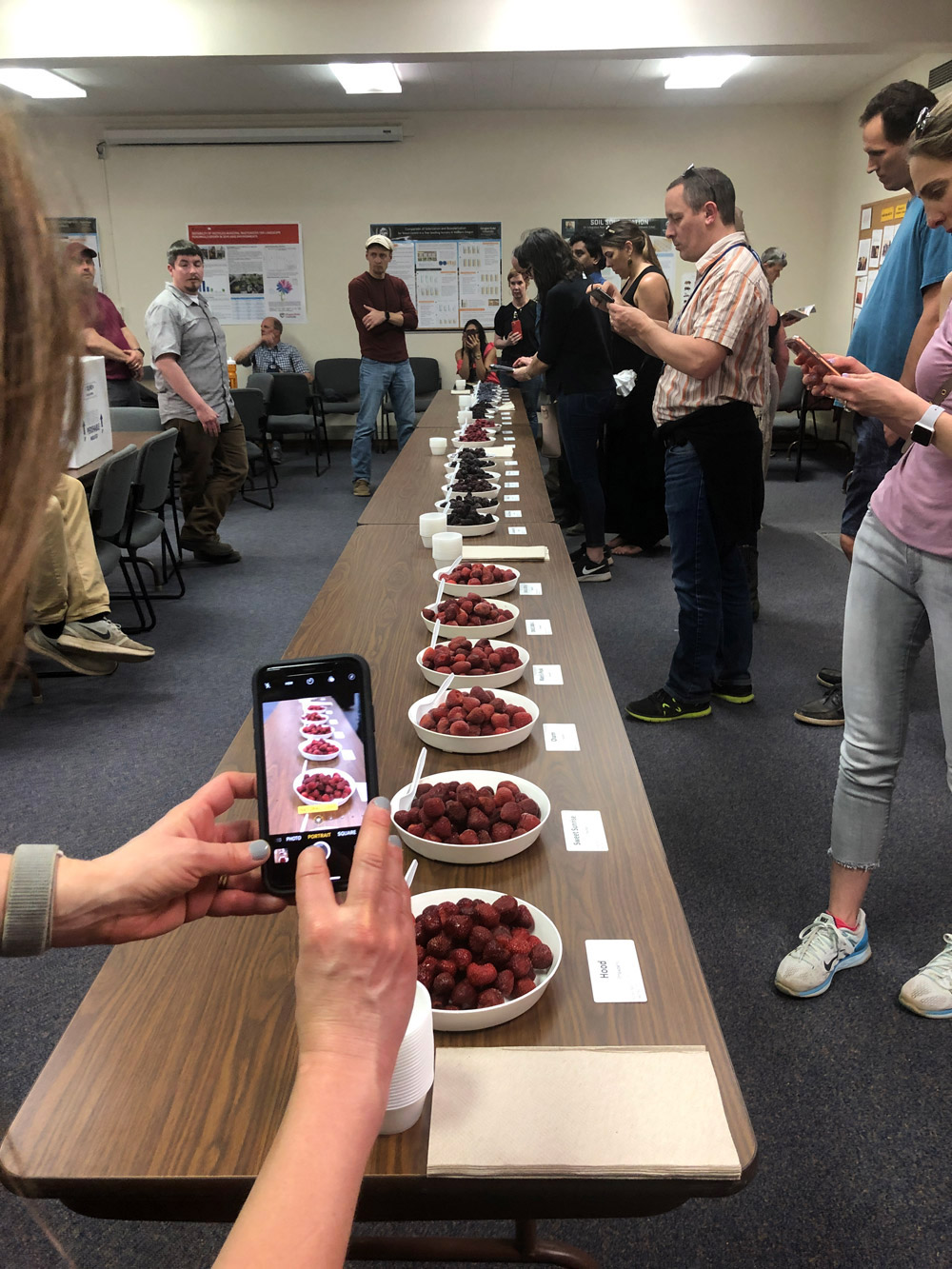 North Willamette Research & Extension Center, Oregon Berries Tasting