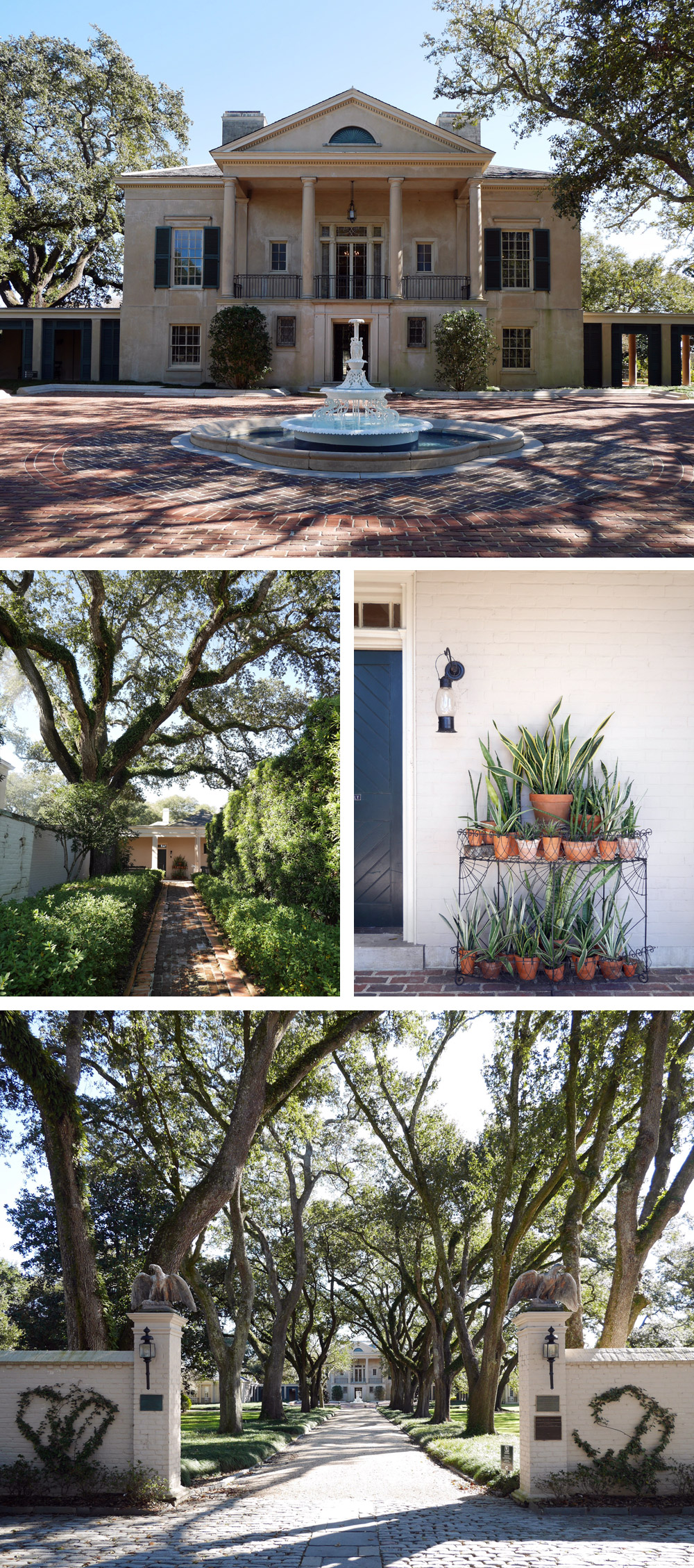 Things To Do in New Orleans: Longue Vue House and Gardens